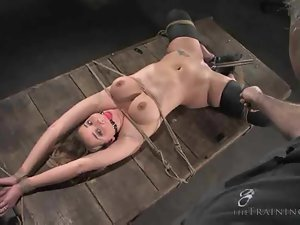 bdsm tube videos from AlphaPorno