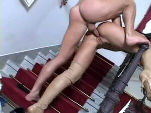 anal sex tube from PornTube